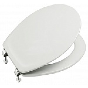 Крышка-сиденье для унитаза Roca Victoria Z.RU80.1.392.0 (ZRU8013920) (дюропласт, микролифт)